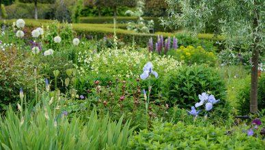 Jak urządzić ogród w stylu wiejskim?